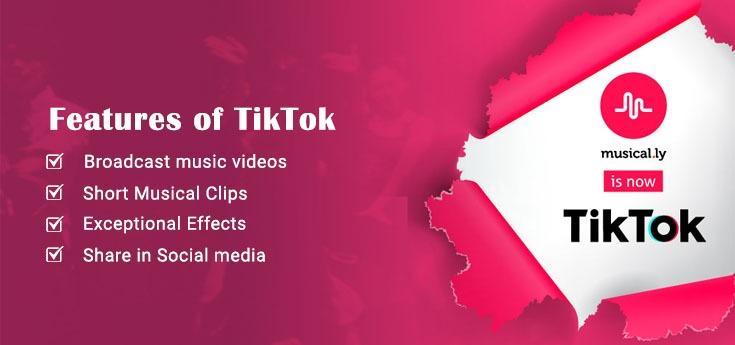 Features of TikTok