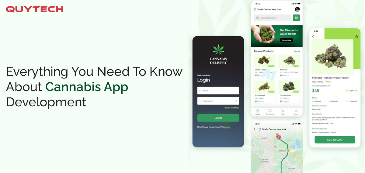 How to Build a Marijuana App